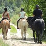 konie osada lato 2012 049