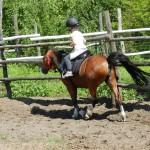 konie osada lato 2012 058