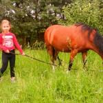 konie polkolonia 058