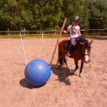konie polkolonia 131