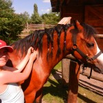 konie polkolonia 188