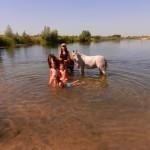 konie polkolonia 198