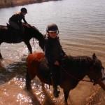 konie teren klienci 081